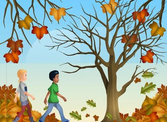Go on a nature walk to observe the changing fall leaves!