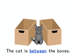 I can find and use prepositions in a sentence.