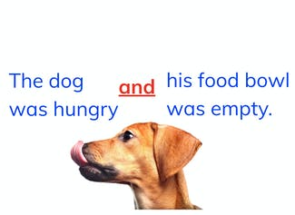 I can identify and use coordinating and subordinating conjunctions in a sentence