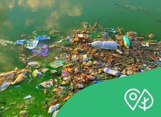 Learn about waste and what the waste problem is.
