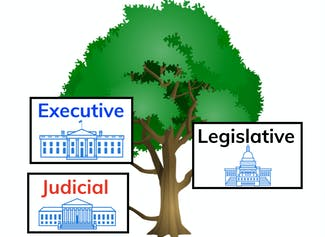 I can identify the 3 branches of government and explain their purposes.