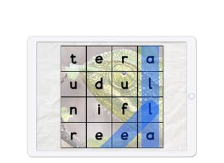 A game to practice spelling words related to animals.